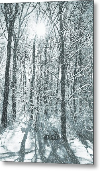 Winter Cold Metal Print by JAMART Photography