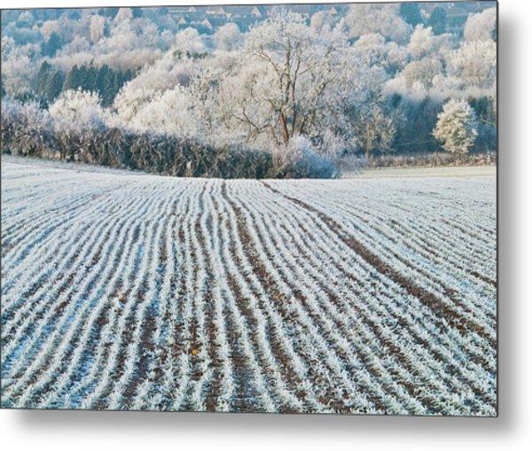 Winter Field, Little Rissington, Gloucestershire Metal Print by David Ross