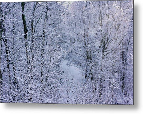 Winter Ice Storm Metal Print