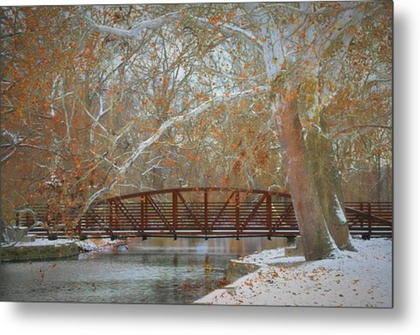 Winter Sycamores Metal Print