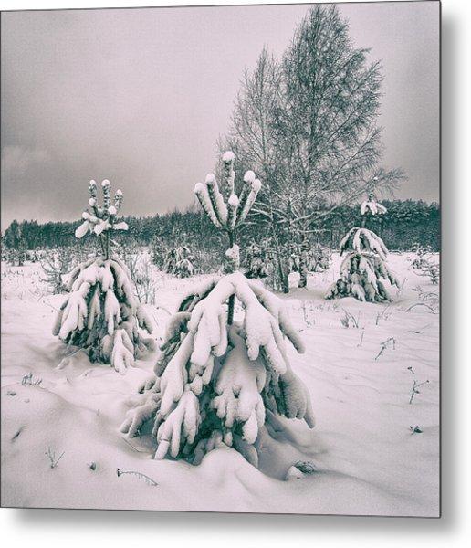 Winter's Coming. Horytsya, 2018. Metal Print