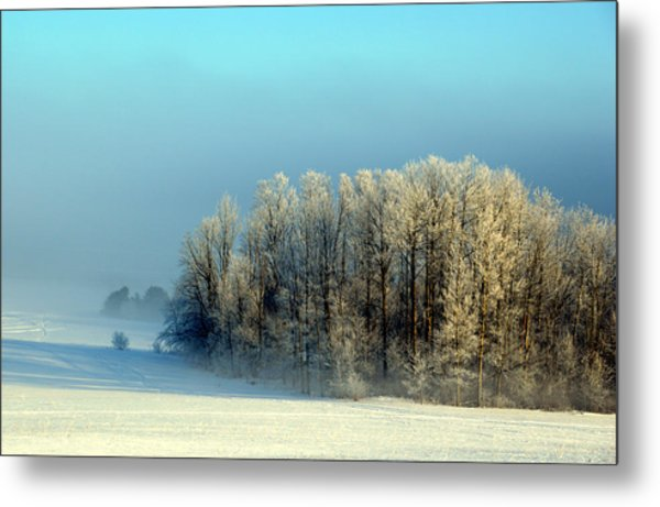 Winter's Heavy Frost Metal Print
