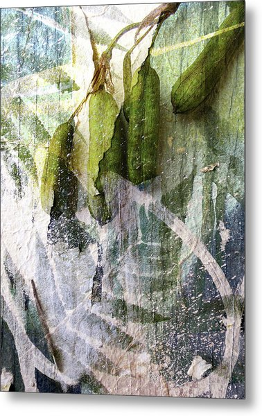 Wistful Might Have Been Metal Print