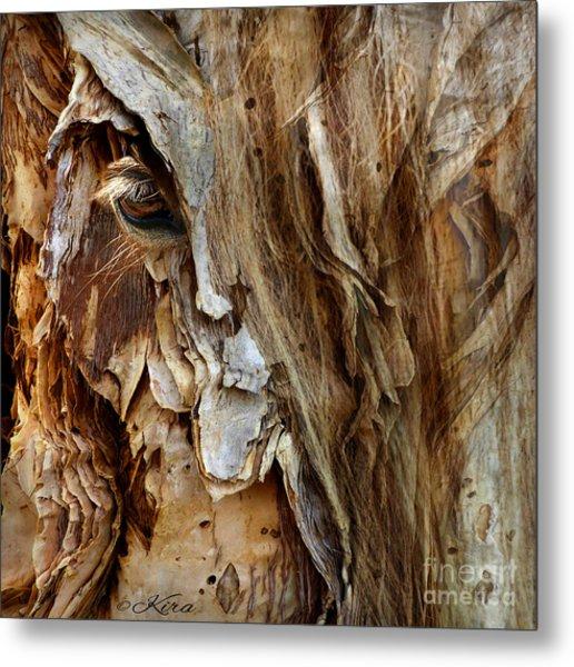 Wood Witch Metal Print