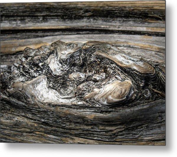 Wood Skine Metal Print