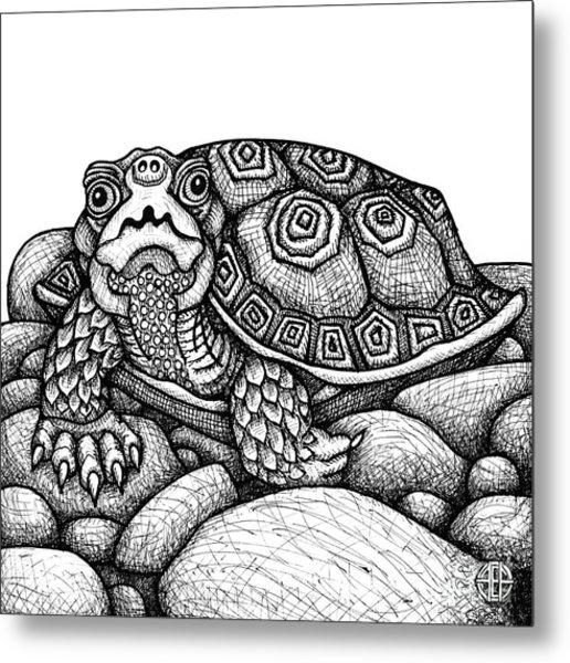 Wood Turtle Metal Print
