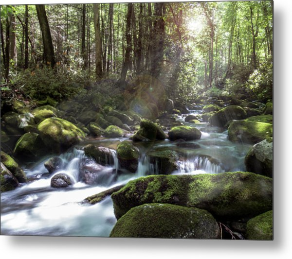 Metal Print featuring the photograph Woodland Falls by Patti Deters