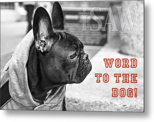 Word To The Dog Metal Print