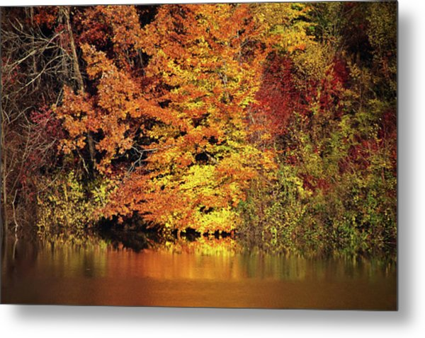 Metal Print featuring the photograph Yellow Autumn Leaves by Mike Murdock