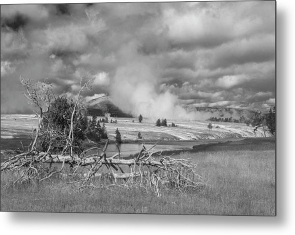 Metal Print featuring the photograph Yellowstone Steam by Matthew Irvin