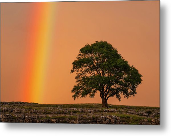 Yorkshire Dales Rainbow Metal Print by David Ross