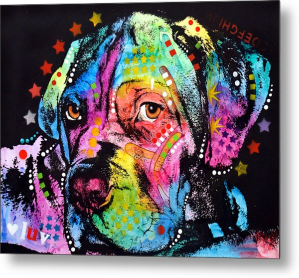 Young Mastiff Metal Print by Dean Russo Art