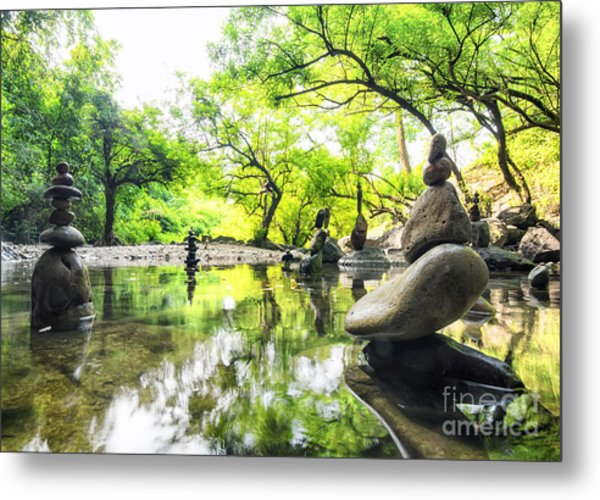 Zen Pond In Forest. Photography Of Metal Print