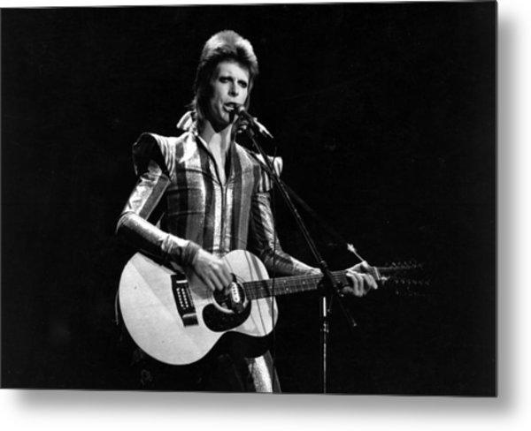 Ziggy Plays Guitar Metal Print