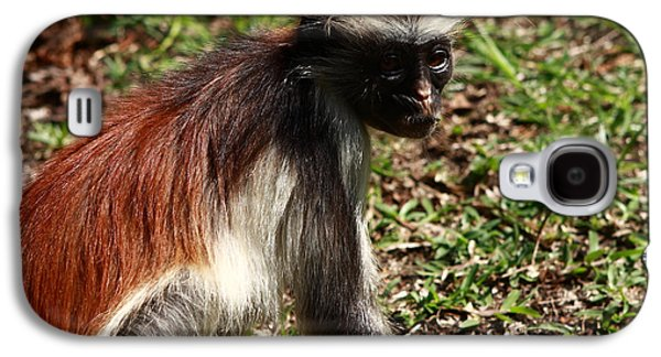 Colobus Monkey Galaxy S4 Case by Aidan Moran