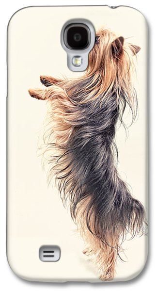 Dancing Yorkshire Terrier Galaxy S4 Case by Susan Stone