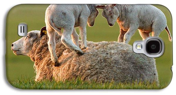 Leap Sheeping Lambs Galaxy S4 Case by Roeselien Raimond