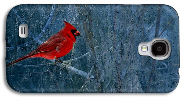 Northern Cardinal Galaxy S4 Case