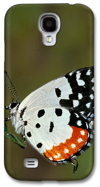 Red Pierrot Butterfly Galaxy S4 Case