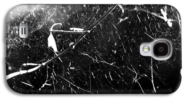 Galaxy S4 Case featuring the photograph  Spidernet by Yulia Kazansky