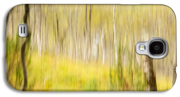 Abstract Forest Scenery  Galaxy S4 Case