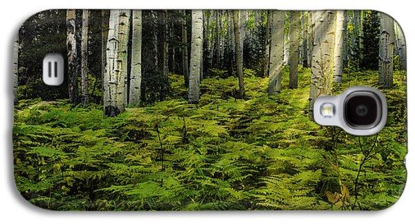 Aspen Sunrise Galaxy S4 Case
