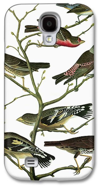 Audubon Songbirds Galaxy S4 Case by Granger