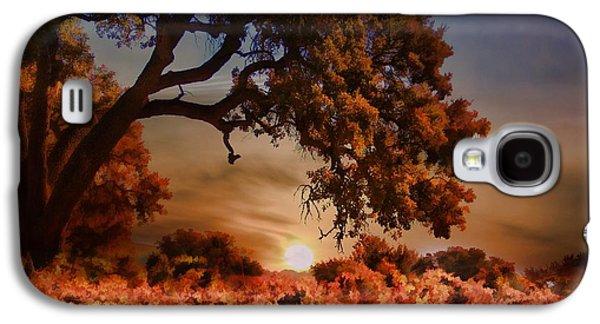 Autumn Vineyard Galaxy S4 Case by Stephanie Laird