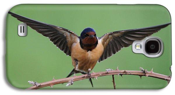 Barn Swallow Galaxy S4 Case