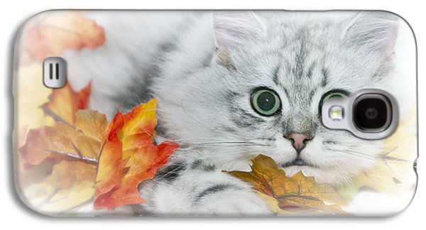 British Longhair Cat Galaxy S4 Case by Melanie Viola