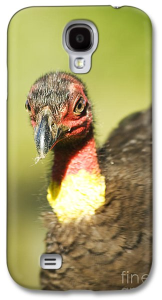 Brush Scrub Turkey Galaxy S4 Case by Jorgo Photography - Wall Art Gallery
