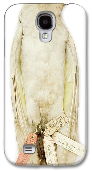 Cockatoo Galaxy S4 Case - Cacatua Sanguinea by Natural History Museum, London