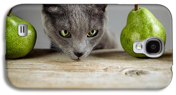 Cat And Pears Galaxy S4 Case by Nailia Schwarz