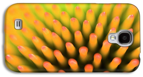 Coneflower Abstract Galaxy S4 Case