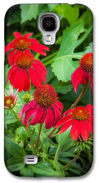 Coneflowers Echinacea Red Painted  Galaxy S4 Case by Rich Franco
