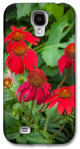 Coneflowers Echinacea Red  Galaxy S4 Case