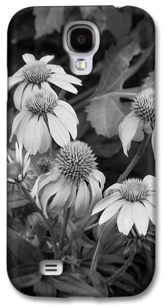 Coneflowers Echinacea Rudbeckia Bw Galaxy S4 Case by Rich Franco