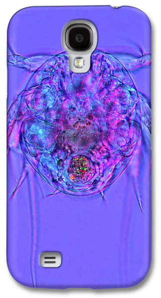 Copepod Larva Galaxy S4 Case by Marek Mis