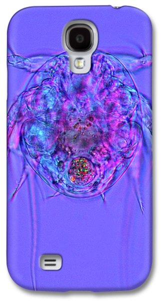 Copepod Larva Galaxy S4 Case