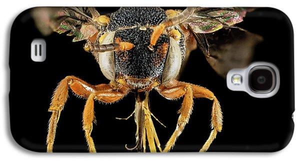 Cuckoo Bee Galaxy S4 Case