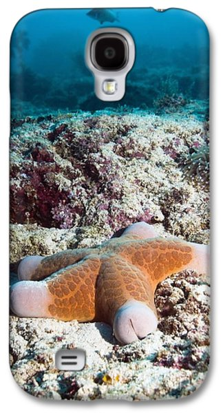 Cushion Star Starfish Galaxy S4 Case by Georgette Douwma