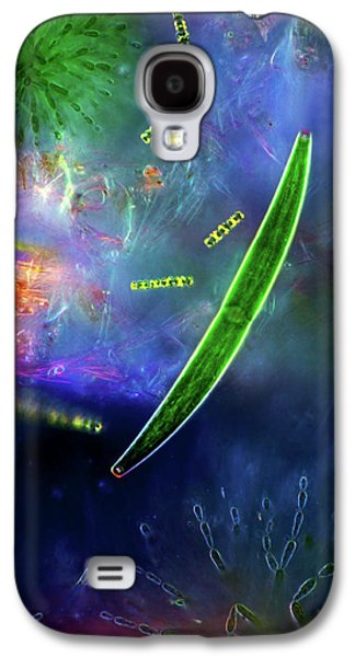 Desmids And Red Algae Galaxy S4 Case