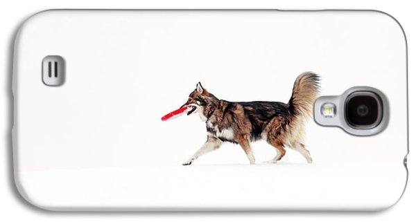 Dog In The Snow Galaxy S4 Case by Grant Glendinning