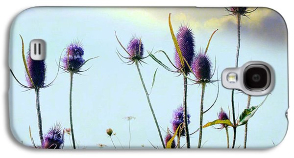 Dream Field Of Teasels Galaxy S4 Case by Gothicrow Images
