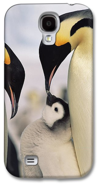 Emperor Penguin Parents With Chick Galaxy S4 Case by Konrad Wothe