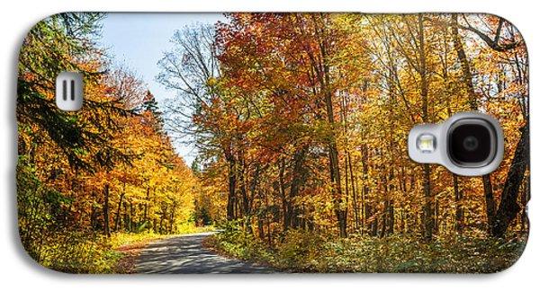 Fall Forest Road Galaxy S4 Case by Elena Elisseeva