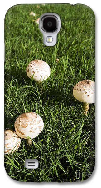 Field Of Mushrooms Galaxy S4 Case by Jorgo Photography - Wall Art Gallery