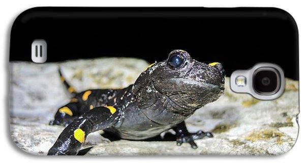 Fire Salamander (salamandra Salamandra) Galaxy S4 Case by Photostock-israel