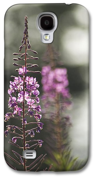 Galaxy S4 Case featuring the photograph Fireweed by Yulia Kazansky