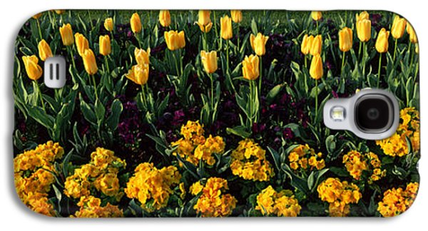 Flowers In Hyde Park, City Galaxy S4 Case